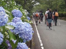富士山!カラダの学校 ノルディックウォーキング:詳細ページを見る