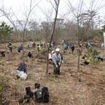 森林整備-農作業の様子-海岸林の整備しています