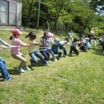 緑のファミリー教室の風景-季節の自然を楽しむ企画を多数行っています
