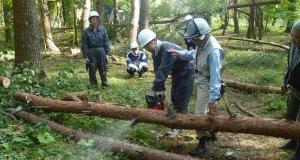 森林整備・農作業