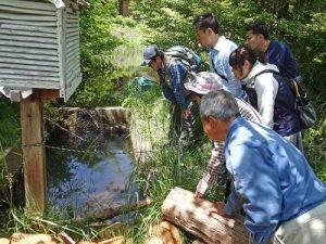 5月「自然体験活動」を開催しました!:詳細ページを見る