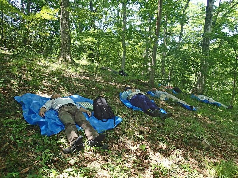 5月「ろうきん森の学校自然体験活動」を募集中♪:詳細ページを見る