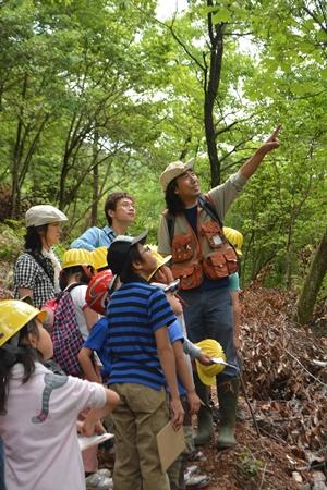 森工塾「初夏のガイドハイクとグリーンウッドワーク体験」:詳細ページを見る