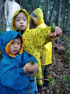 4/15「森の恵みを味わう」開催報告!:詳細ページを見る