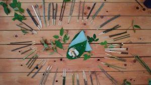 6/24「植物図鑑と森を歩く」開催報告!:詳細ページを見る