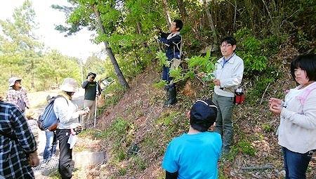 自然にふれる、木にふれる!『森工塾』募集中(4月):詳細ページを見る