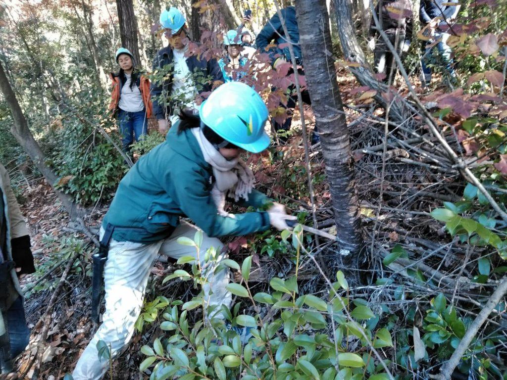 自然にふれる、木にふれる!『森工塾』募集中(7月):詳細ページを見る