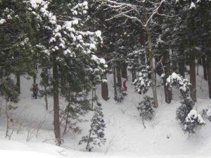 1/28「雪あそび!」を募集中♪:詳細ページを見る