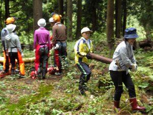 11月定期山林整備隊「辻又の守人」を募集中♪:詳細ページを見る