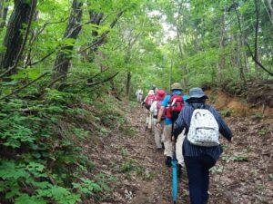 6月12日「中ノ俣古道ツアー 「春日山城への山越えを歩く」 (全3回コースの1回目)」を開催しました!:詳細ページを見る