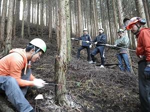 ●富士山地区_労福協間伐体験