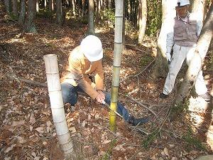 森の手入体験(福島)